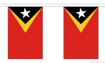 EAST TIMOR BUNTING - 3 METRES 10 FLAGS